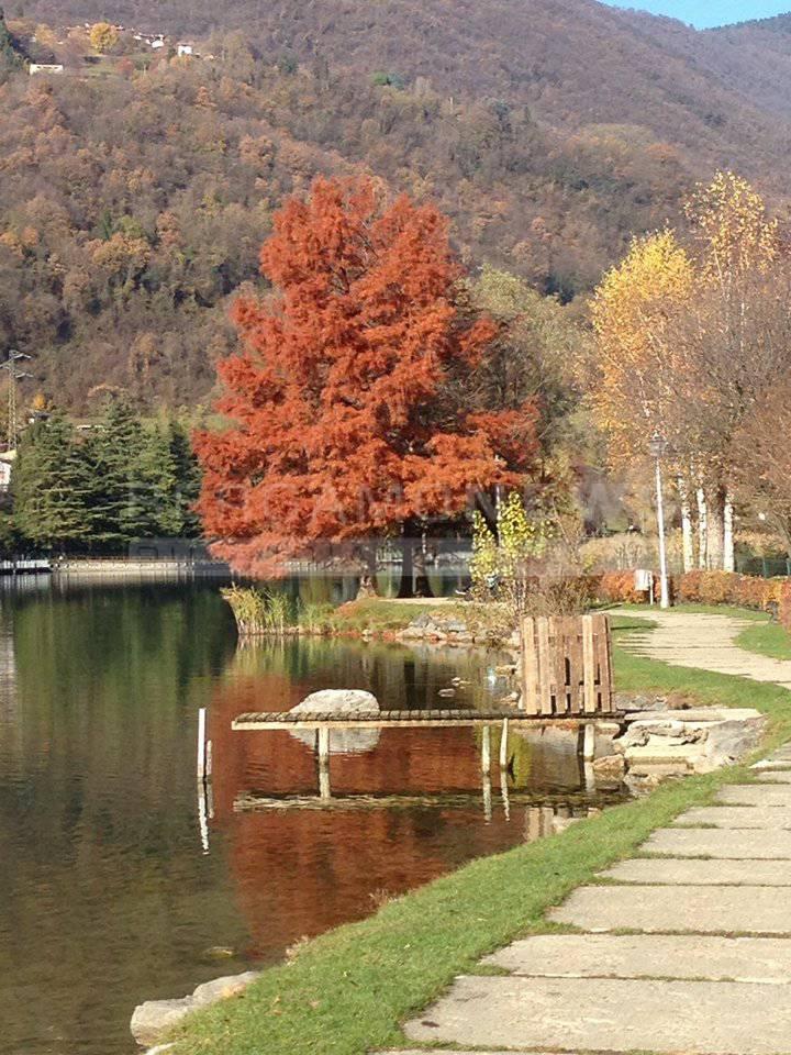 monasterolo autunno Piersandro Paleari