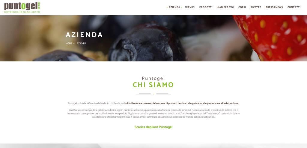 Nuovo sito internet per Puntogel