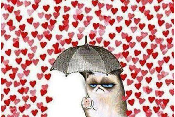 no a san valentino
