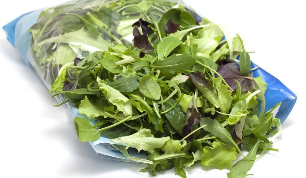 Orrore nella busta di insalata: tra la lattuga spunta un topo morto