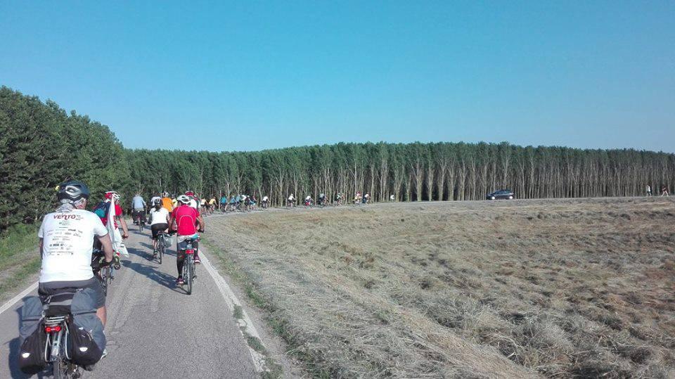 Giri in bici lungo il Po