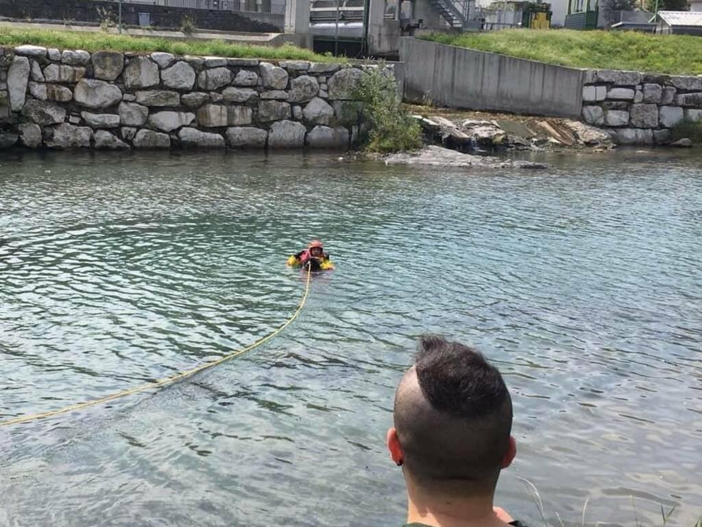 pitbull in un canale
