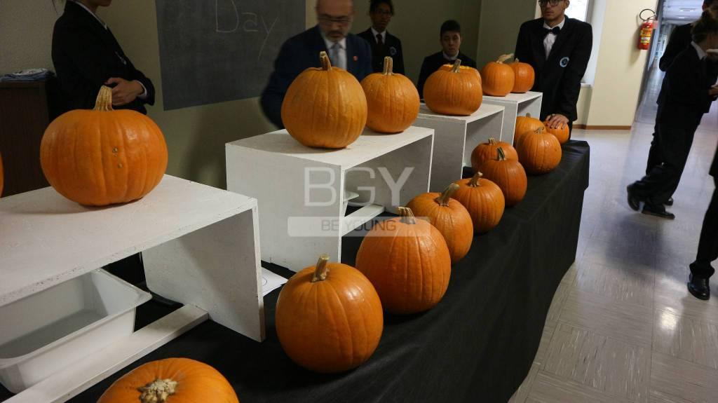 Zucca di halloween Fondazione ISB