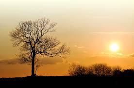 sole inverno