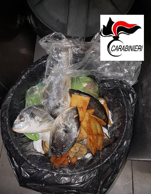 Pesce Carabinieri