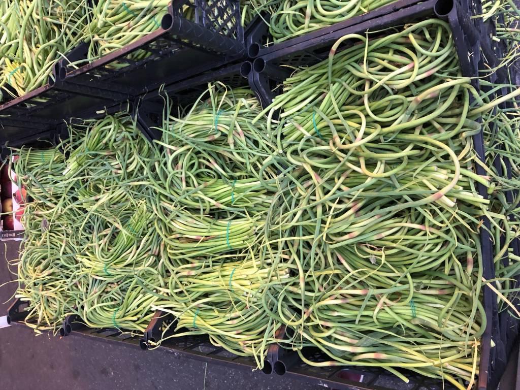 talli d'aglio