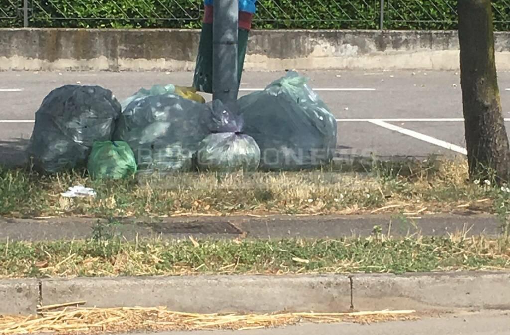 Osio Sotto, rifiuti abbandonati