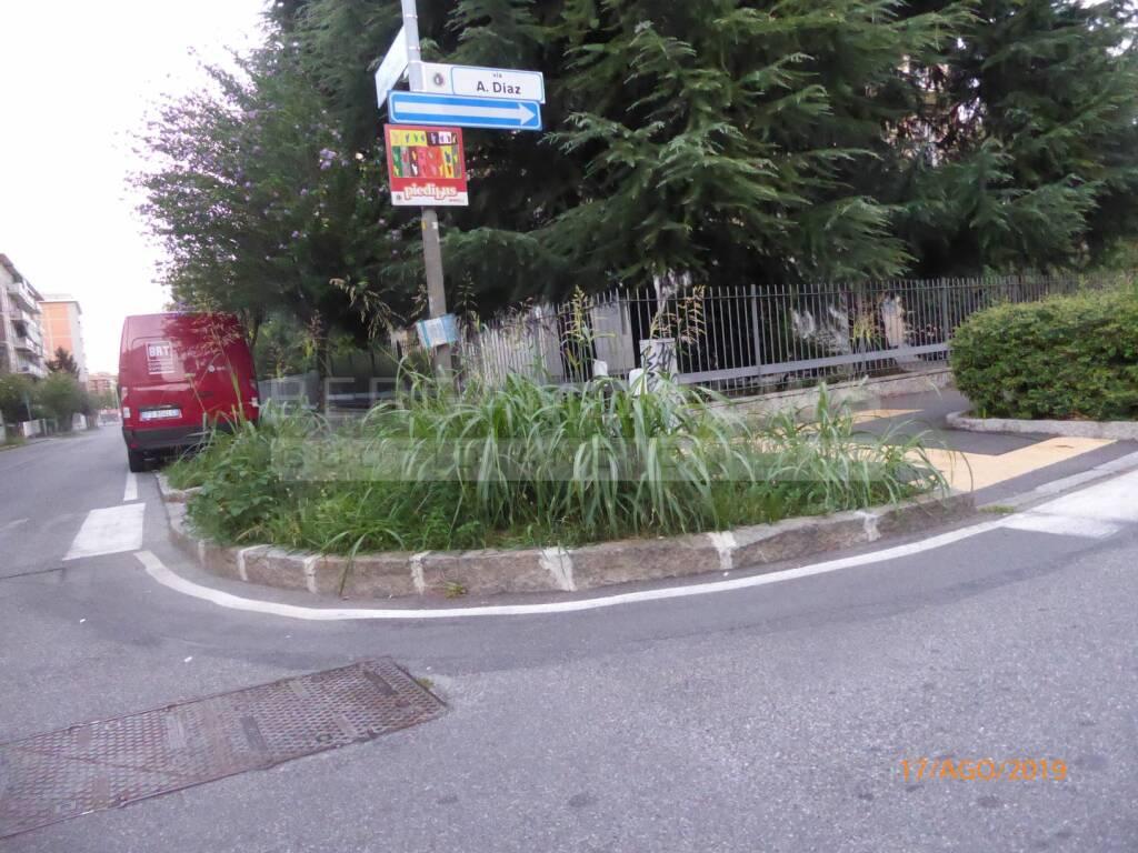 Incuria delle aiuole a Bergamo