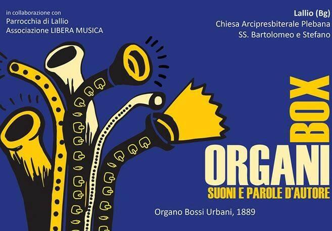 box organi 2019