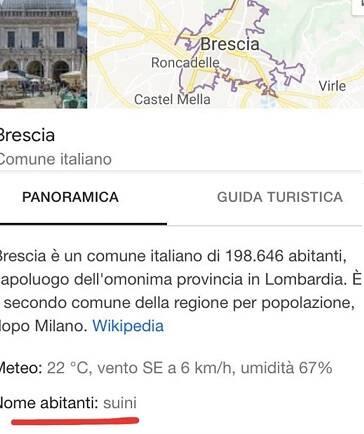 Brescia suini