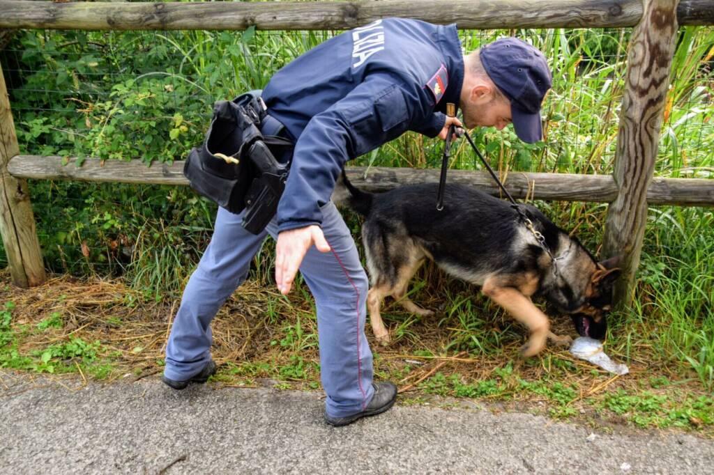 droga cane polizia