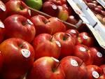 sagra della mela e dei prodotti tipici