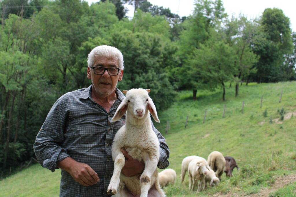 Valter Grossi e i suoi cani da pastore