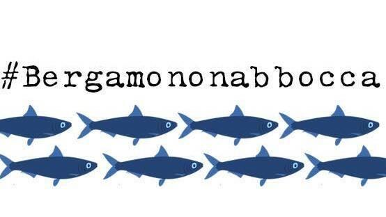 sardine bergamo