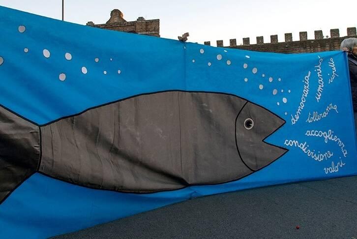 sardine roma (foto Luciano di meo)