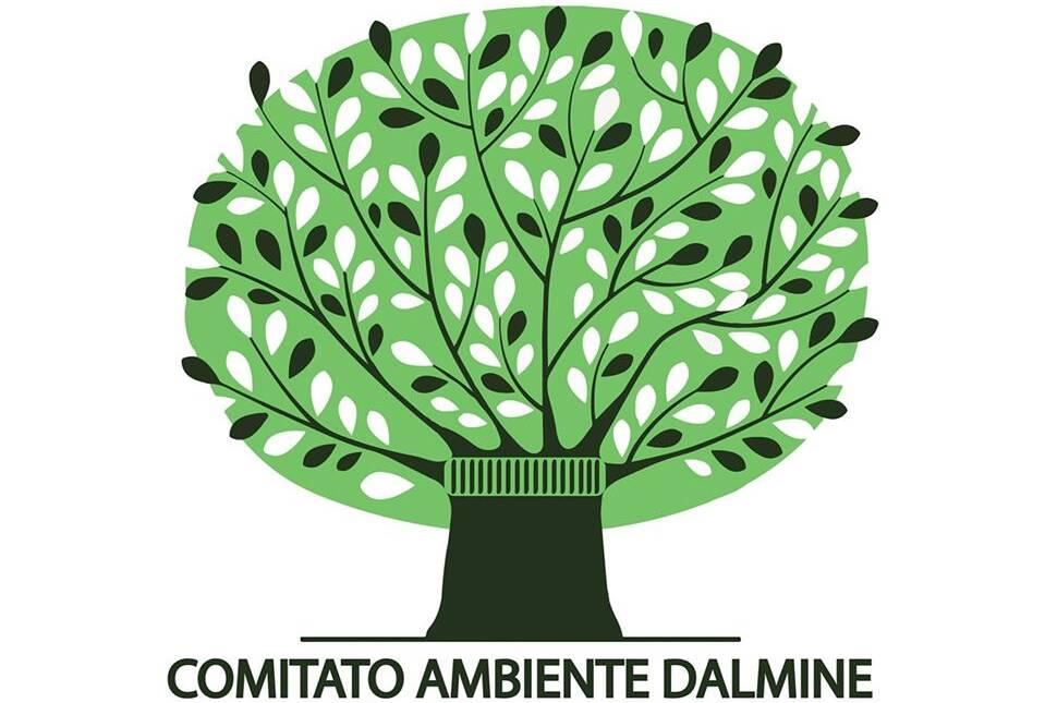 comitato ambiente dalmine