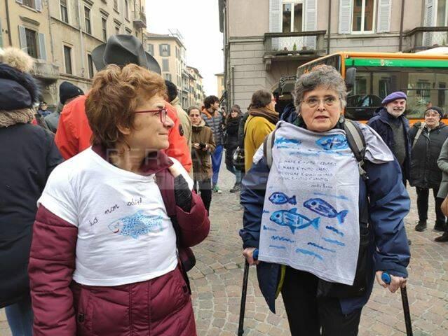Sardine in piazza Pontida