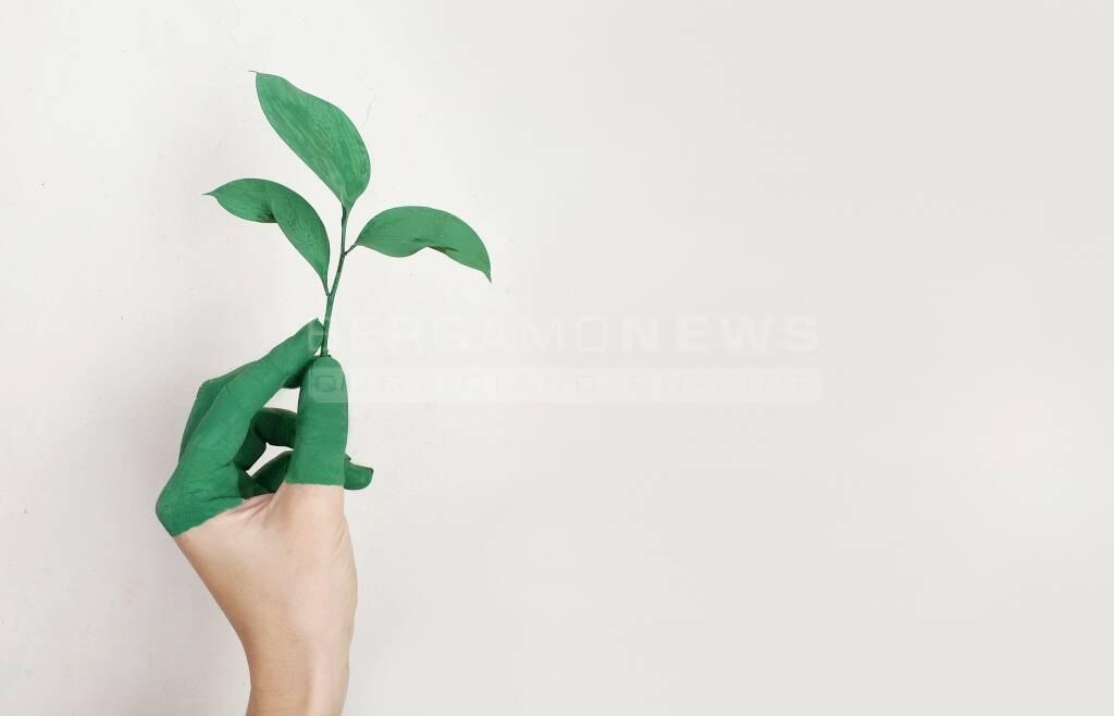 """""""Green New Deal: portare l\'Italia e l\'Europa verso lo sviluppo sostenibile"""""""