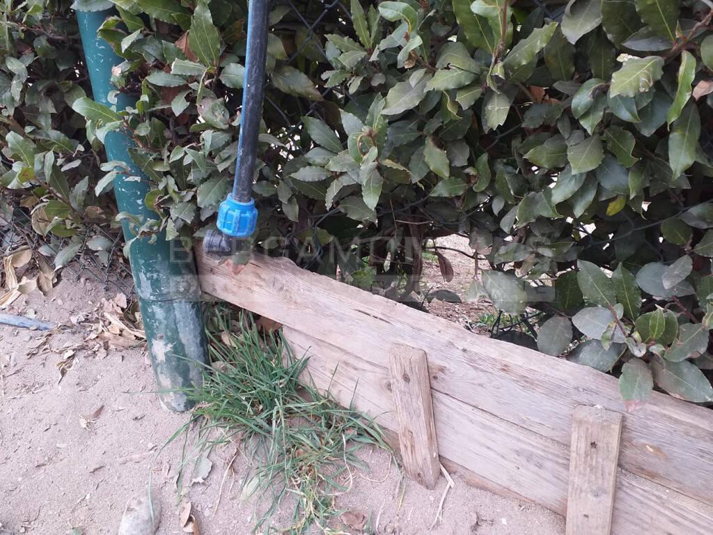 L'area cani di Monterosso