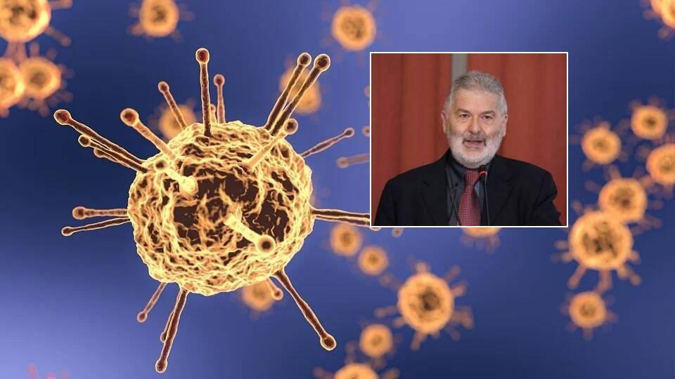Marinoni coronavirus