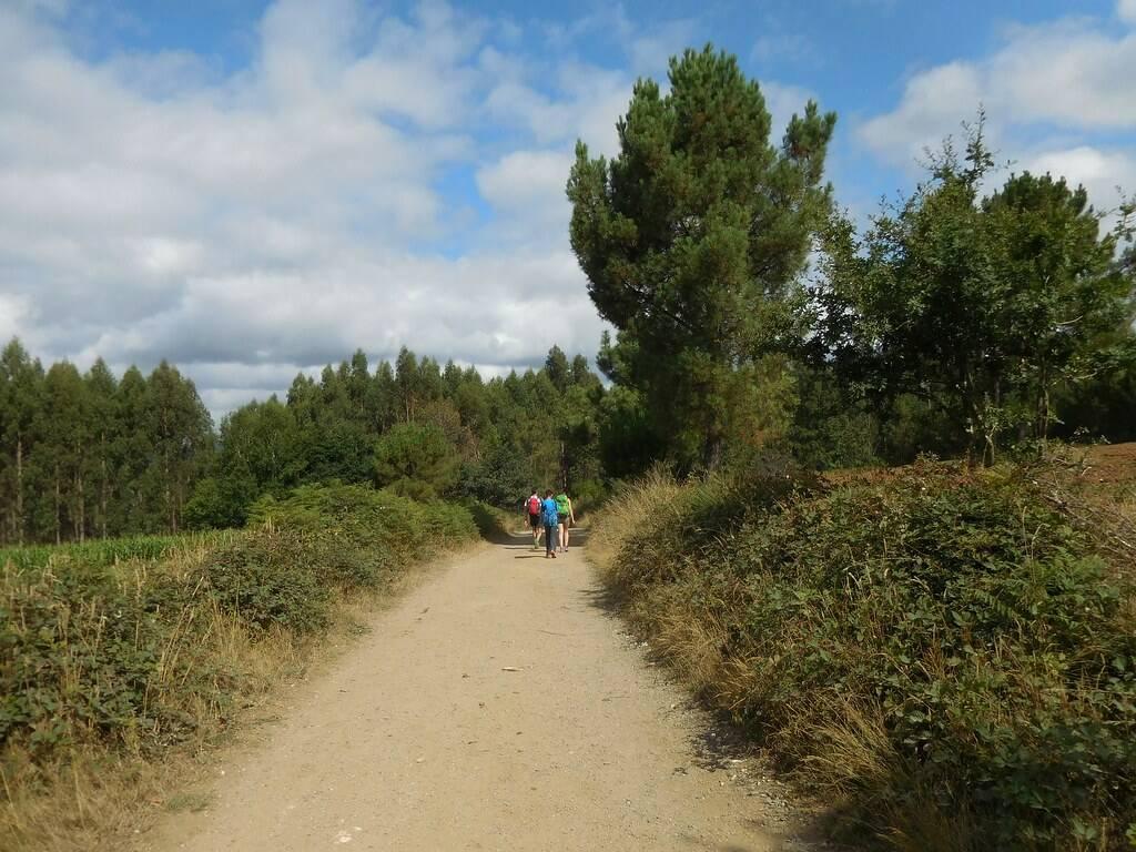 San Giacomo: le reliquie e la nascita del Cammino di Santiago di ...
