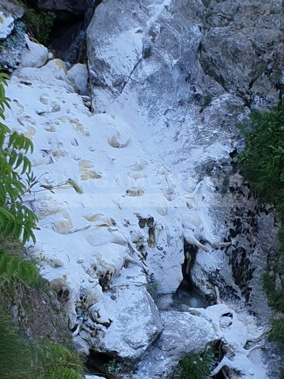 A Branzi 80 pecore morte in un torrente