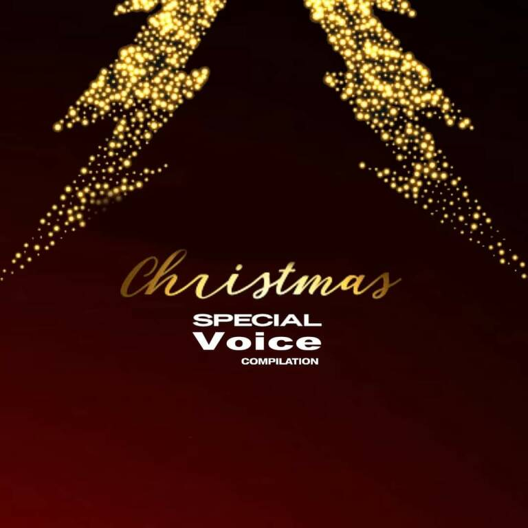 Christmas Special Voice Compilation