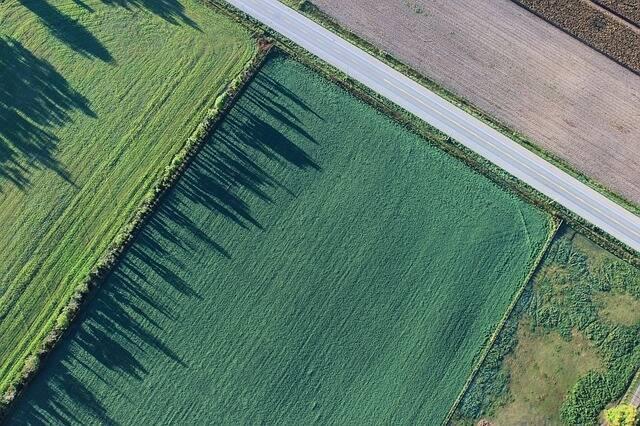 Politica agricola UE: proroga dei piani di sviluppo rurale fino al 2022