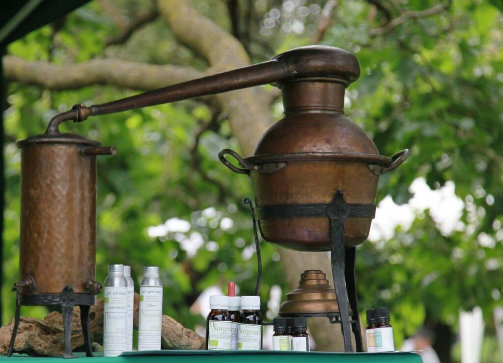 Benessere e salute in goccia: corso online sugli oli essenziali
