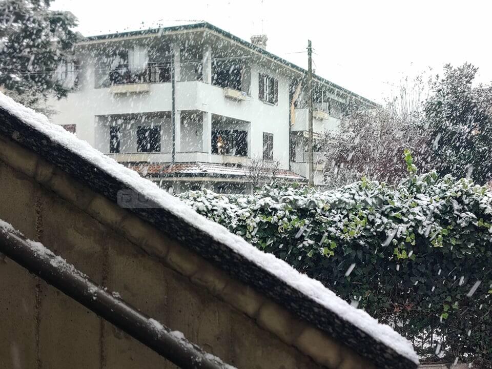neve bariano