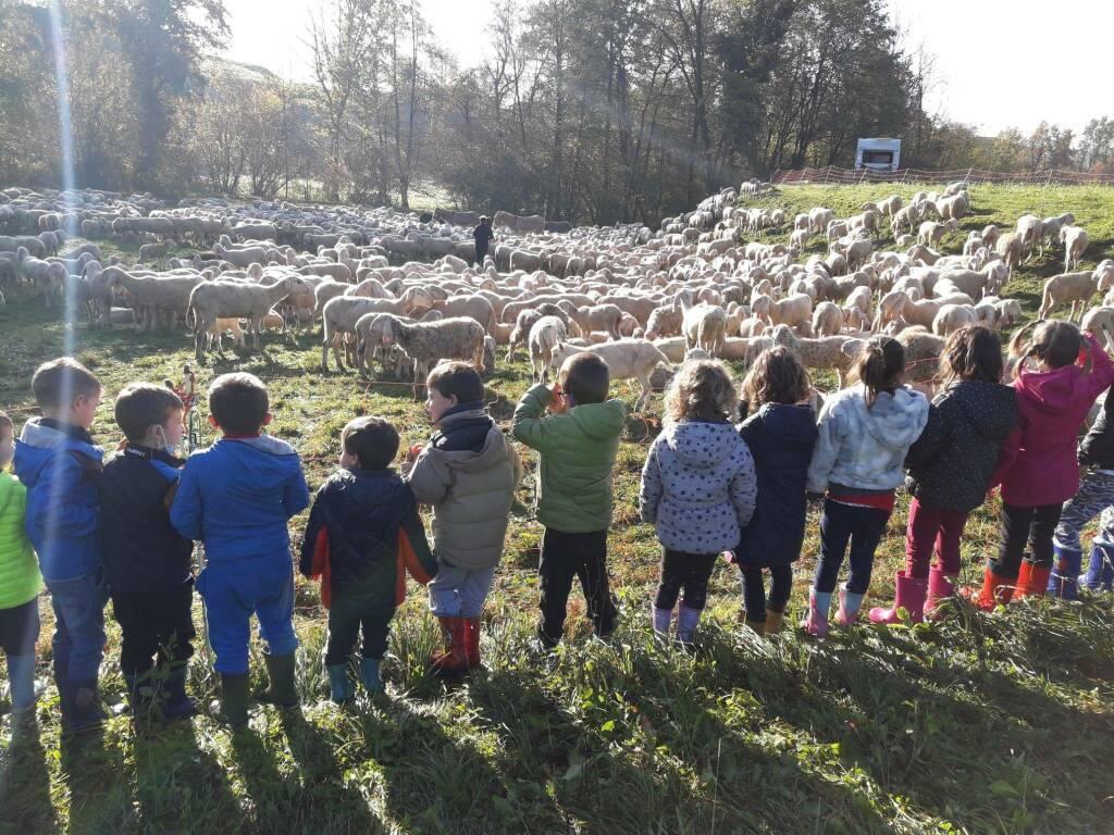 azzonica scuola infanzia bambini natura