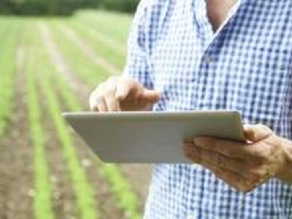 Agricoltura: innovazione digitale in crescita nonostante la pandemia