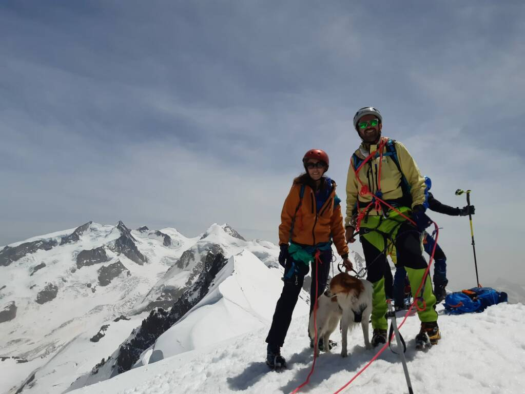 L'impresa di Kiwi, il cane bergamasco che ha scalato i 4.000 del monte Breithorn